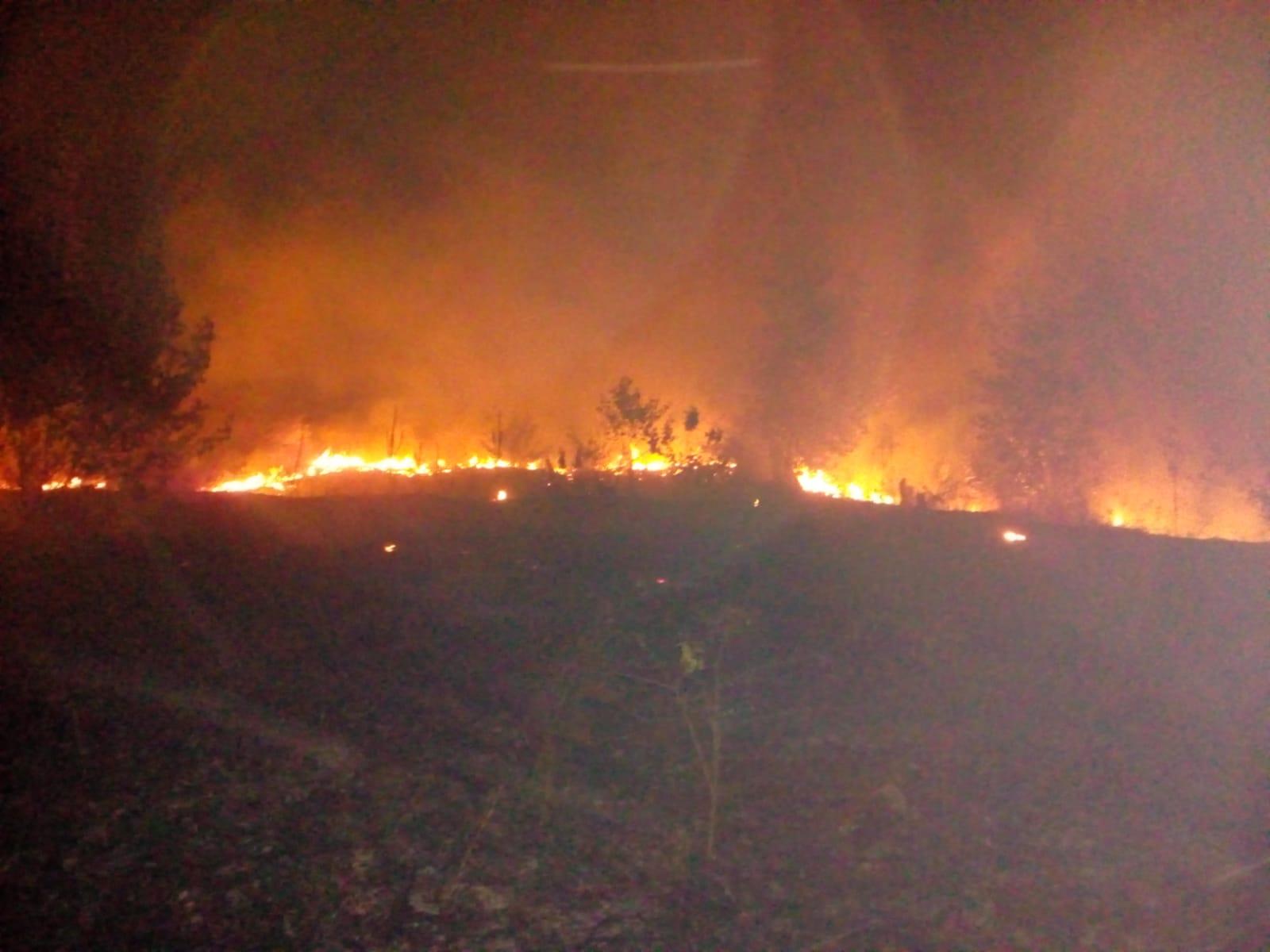 Incendiu Crangurile