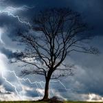 Cod Galben furtună in Dambovita