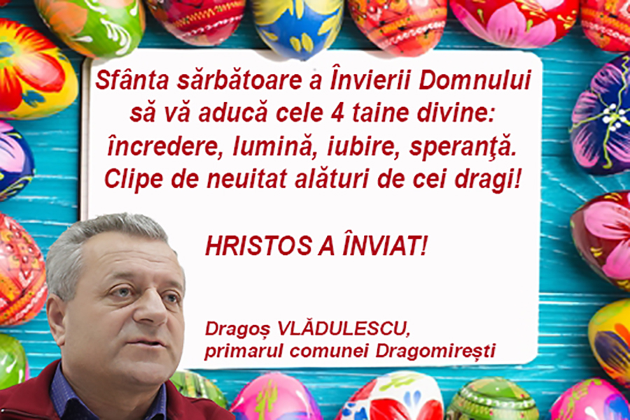 Dragos Vladulescu